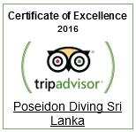 best_diving_tripadvisor_2016