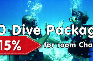 special_offers_for_scuba_diving_sri_lanka_15
