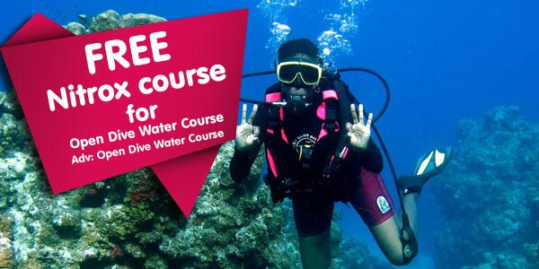 free nitrox course free diving offers sri lanka